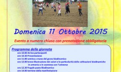 2 Seminare il futuro 2015